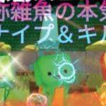 自称雑魚のスナイプ&キル集!視聴者リクエストです!