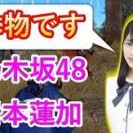 【荒野行動】アイドルも荒野! 乃木坂48 岩本蓮加登場 0から始める荒野行動!初心者必見!